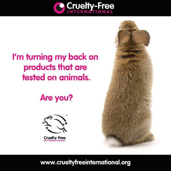 3+ Reasons Why You Should Choose Cruelty Free Makeup? 8