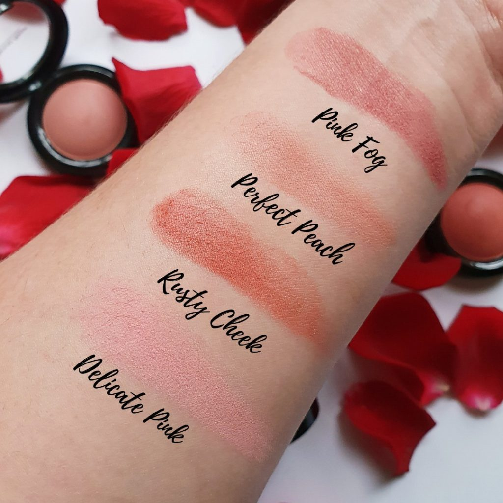 Pierre Rene 4 Powder Blush 2